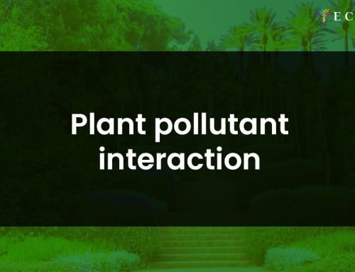Plant pollutant interaction